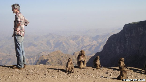James Jeffrey and a group of gelada monkeys in the Simien Mountains