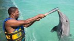 A man holds the Queen's Baton above water as a dolphin touches it with its snout.