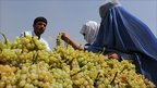 Afghan women buy grapes from a Kabul street vendor