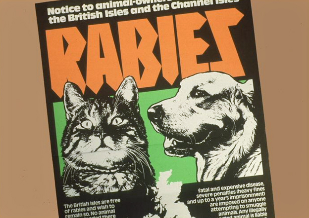 Rabies poster from mid-70s