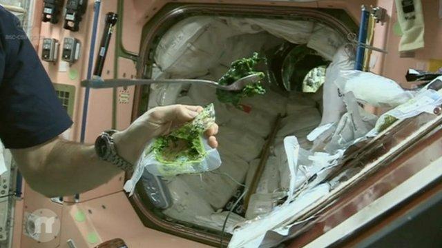 Space food