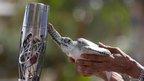 Turtle hand on baton