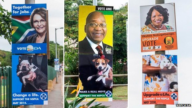 Combination of NSPCA adverts attached to South Africa election posters