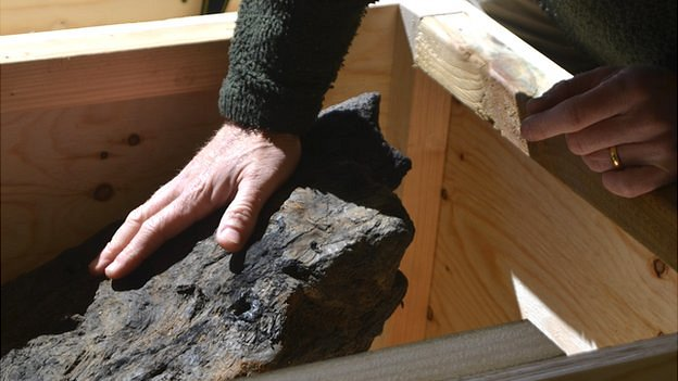 Roman Timber
