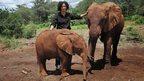 Paula Kuhumbu with juvenile elephants (c) Paula Kuhumbu