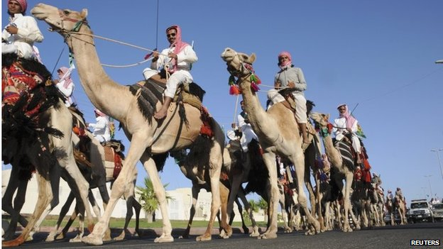Camels near Dubai (file photo)