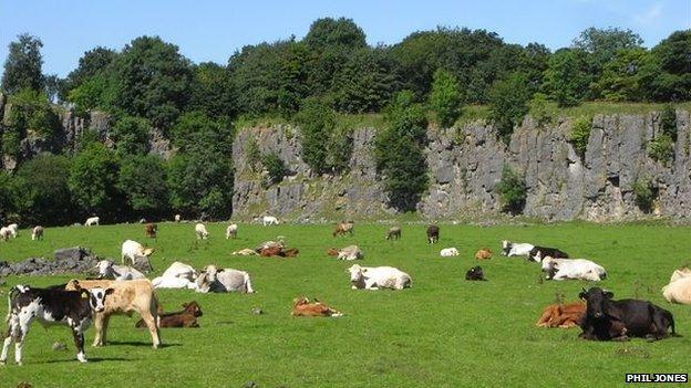 Cowdale Quarry