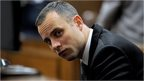 South African Paralympic athlete Oscar Pistorius sits in the dock during his ongoing murder trial, in Pretoria