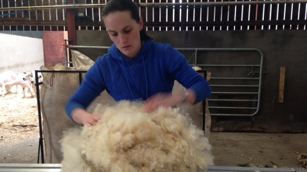 Caryn Webster is hoping to bring home a trophy in the wool handling competition