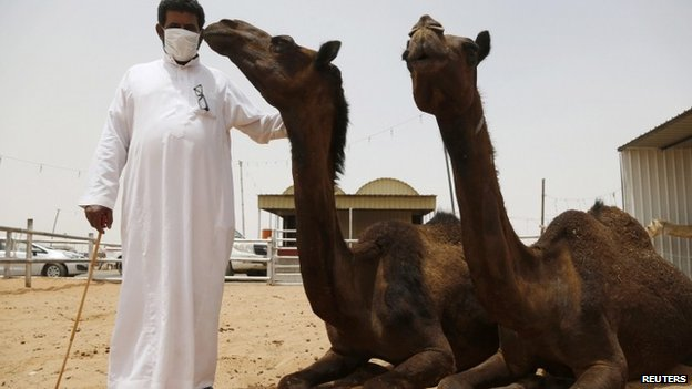 Man with camels in Saudi Arabia