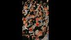 Shia Muslims during Ashura, 2002
