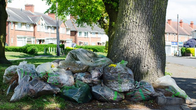 Garden waste in Prince of Wales lane