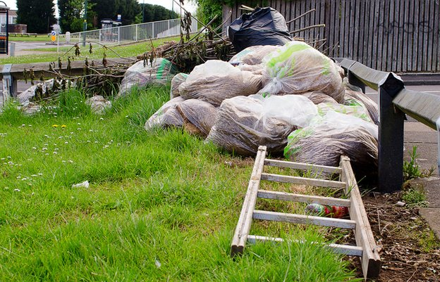 Garden waste abandoned in Druid's Heath