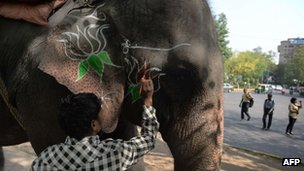 An Indian mahout adorns the face of an elephant with a party logo in the vicinity of the Bharatiya Janata Party (BJP) headquarters in New Delhi on May 16, 2014