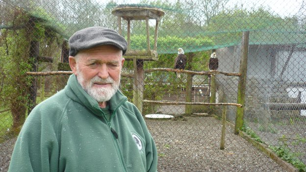 Griff Griffiths at the Welsh Hawking Centre