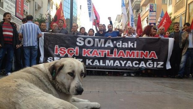 "Protesters in Izmir with a banner reading: ""We will not remain silent against massacre of workers in Soma"""