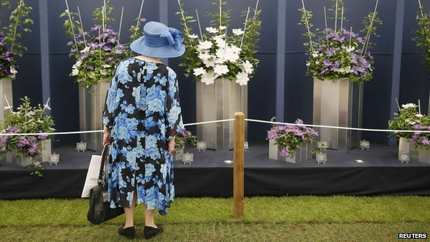 Woman looks at flowers at Chelsea Flower Show