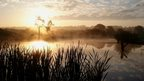 Hazy sunrise in the background, with a pond in the foreground, early morning mist hovering on top. Pond grass sits in the foreground, with trees darkened in shadow lie in the background. Light blue sky scattered with grey clouds.