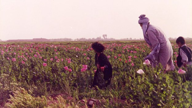 Helmand farmers in a poppy field in 1997