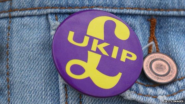 A UKIP badge