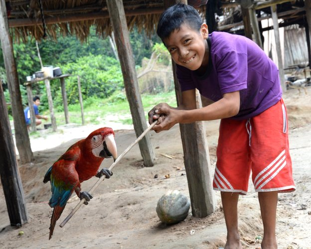 boy with parrot