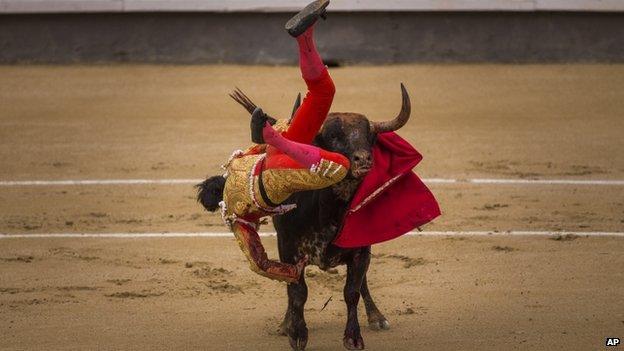 Jimenez Fortes (20 May 2014)