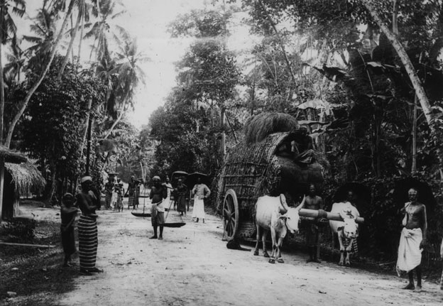 Road from Colombo to Point de Calls, 1924