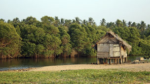 Hut in Sri Lanka