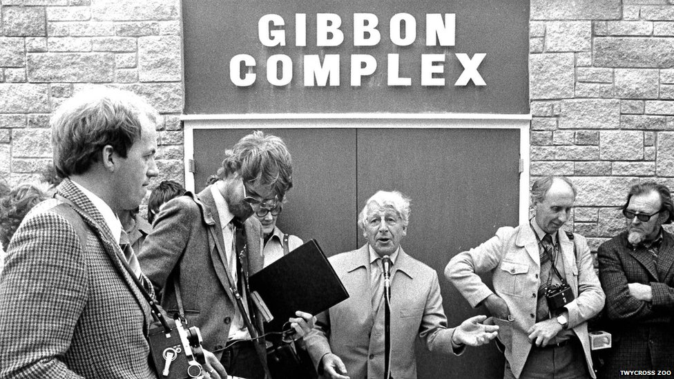 the visitor gibbons ruark commentary Full text of the george washington university 1987-1997 see other formats.