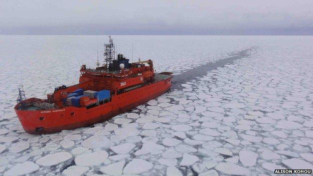 Sea ice Antarctic