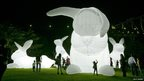 Giant inflatable rabbits are pictured on the foreshore of Sydney harbour on the opening night of the Vivid Sydney light and music festival.