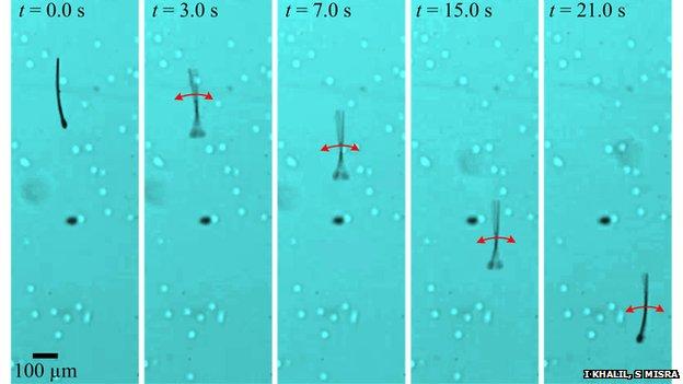 sperm-inspired robot swimming