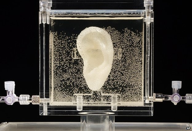 Vincent van Gogh replica ear