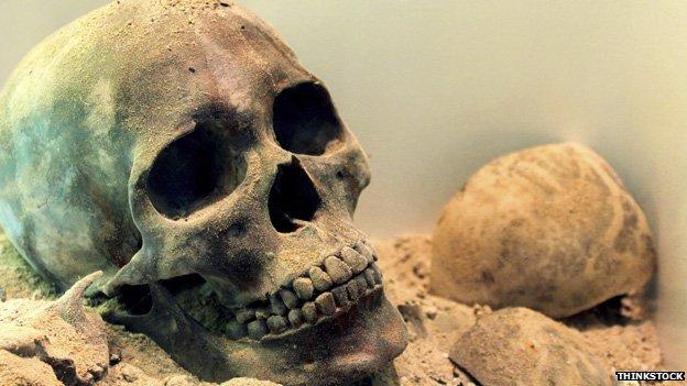 Skull generic