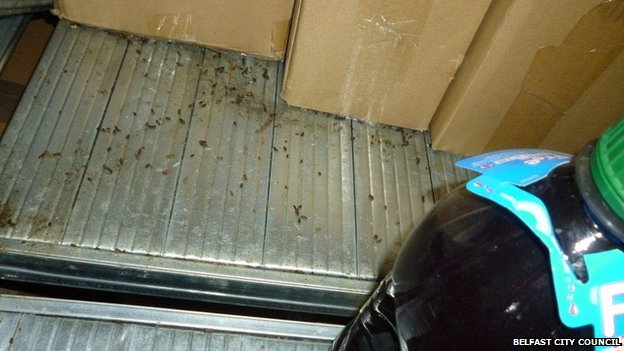 Council inspectors also found fresh mice droppings in the store