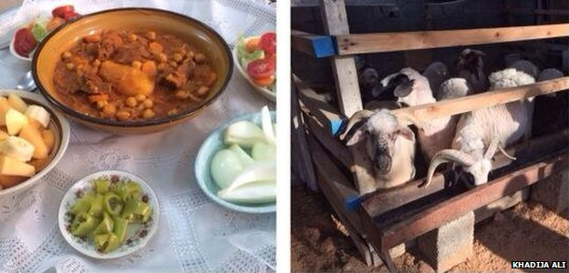 A composite image posted on Twitter by Khadija Ali showing food and some goats