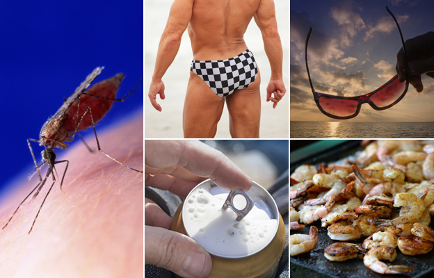 From left: mosquito on skin, man wearing small swimming trunks, man holding sunglasses, prawns/shrimps on a barbecue, hand opening tin of beer