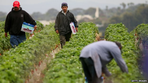 Farm workers appeared in Carlsbad, California, on 28 April 2006