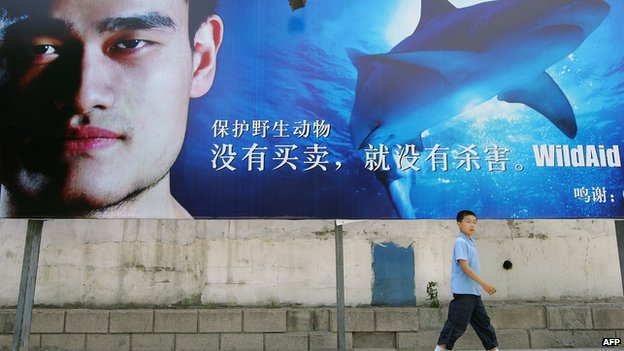 This file photo taken on 5 June, 2007 shows a boy walking past a billboard showing Chinese basketball star Yao Ming in a campaign to raise awareness on wildlife preservation, part of his campaign to urge Asians to stop consuming shark's fin soup