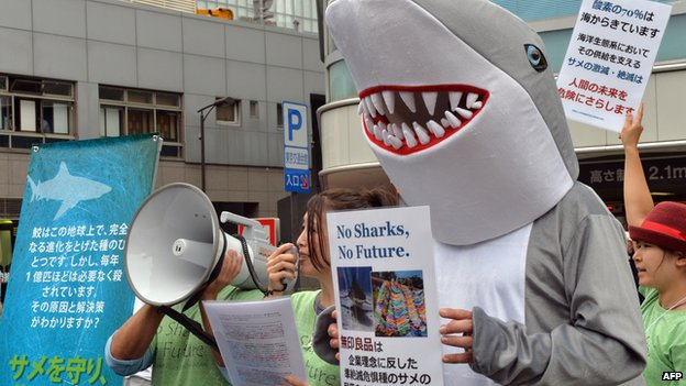 Some 30 protestors chant anti-shark hunting slogans 'Stop selling shark fin soup' in front of a store of the Muji supermarket chain in Tokyo on 6 October, 2013