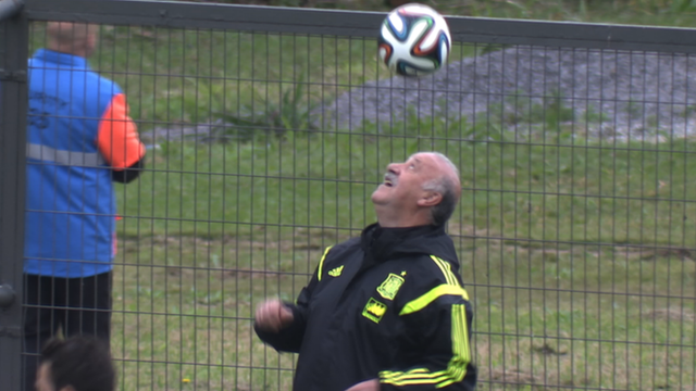 Spain coach Vicente del Bosque at training