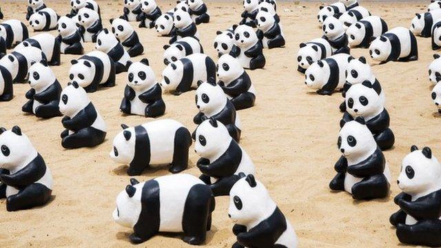 Paper pandas