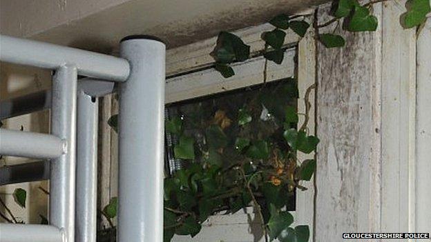 Ivy coming through bedroom window