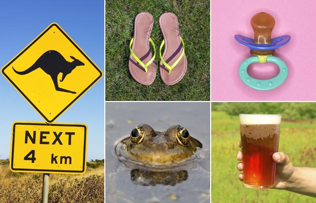From left: Kangaroo warning sign, frog, flip-flops, glass of beer, dummy