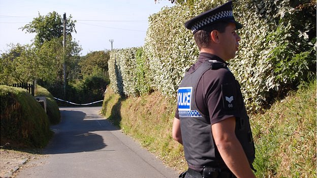 Guernsey Police officer in road near plane crash