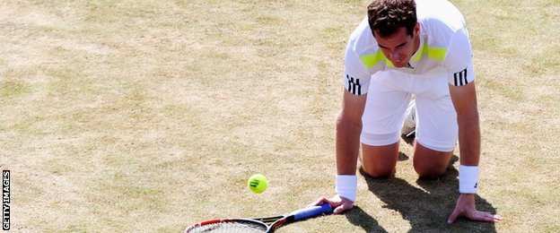 Andy Murray is on his knees as he loses to Radek Stepanek at Queen's