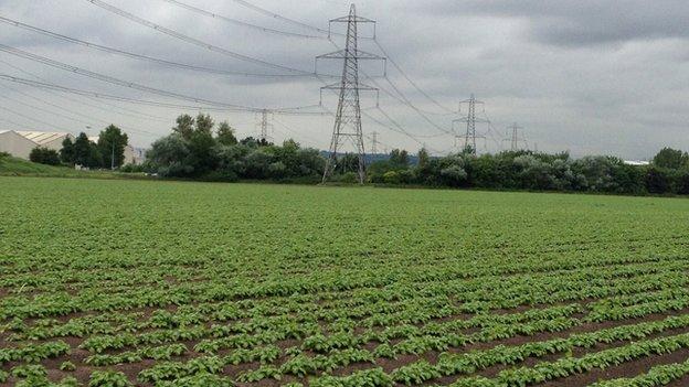Land earmarked for a solar park on Deeside