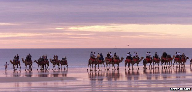 Camel trains on Cable Beach in Broome