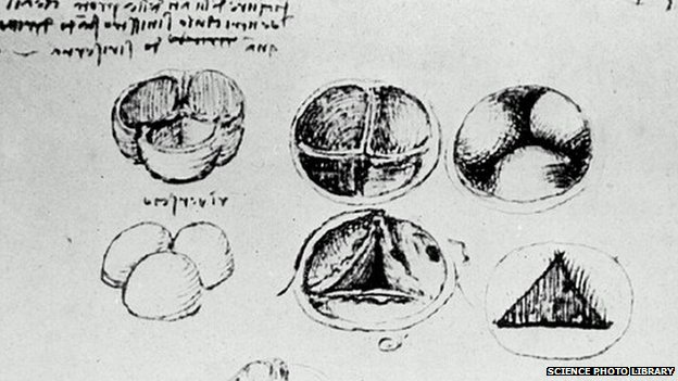 Heart valves drawing by Leonardo da Vinci