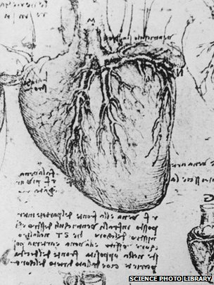 Leonardo da Vinci's diagram of the heart and blood vessels